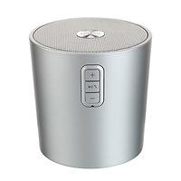 Loa Hi-Fi Wireless Bluetooth (Bạc) Model DS-1162