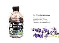 Hạt giống gieo trồng 004116